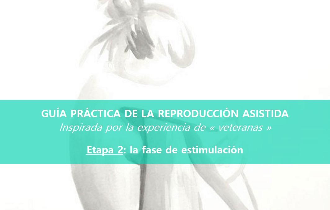 Reproducción-asistida-la-fase-de-estimulación