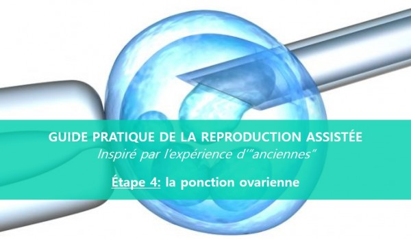 reproduction-assistée-ponction-ovarienne