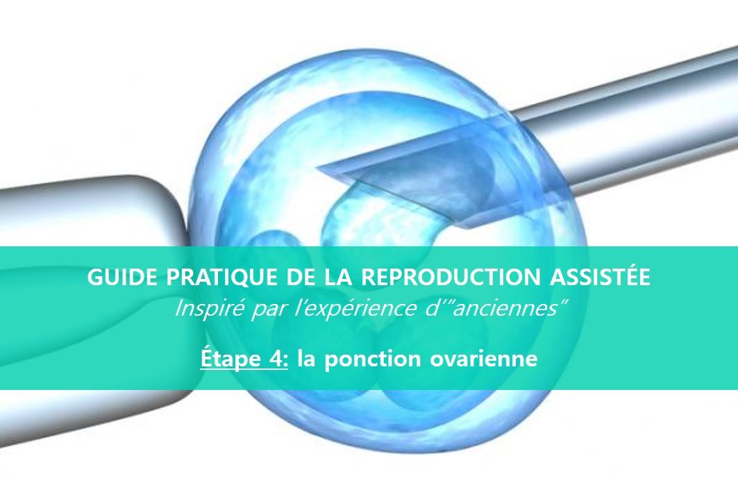 reproduction-assistée-ponction-ovarienne