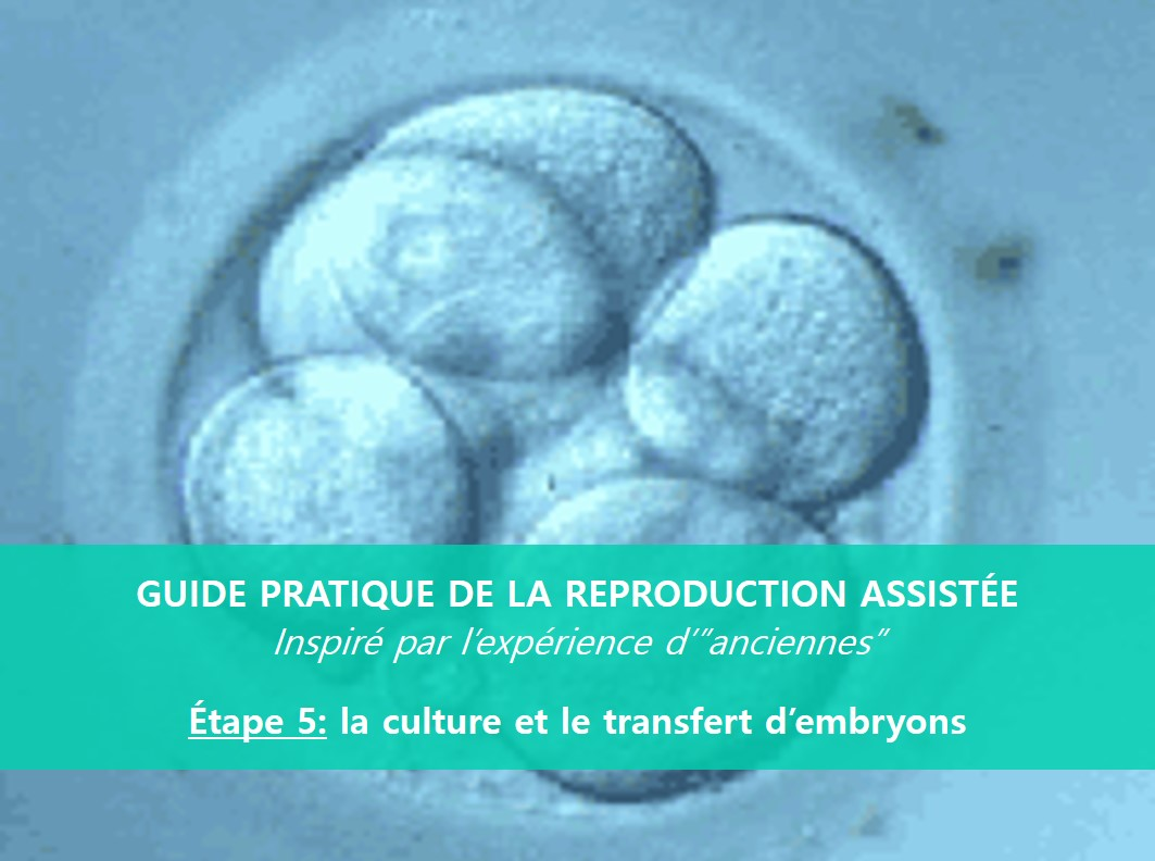 GUIDE PRATIQUE DE LA REPRODUCTION ASSISTÉE – ÉTAPE 5: LE TRANSFERT EMBRYONNAIRE